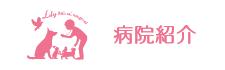 名古屋市昭和区・リリー動物病院・東洋医学クリニックについて